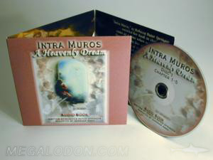 custom 3 cd set discs pocket trifold packaging