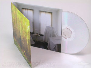 custom cd jacket packaging LP style