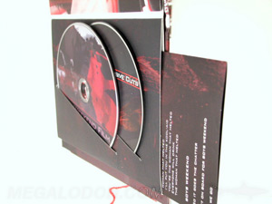 dvd swinging sleeve dvd book double disc