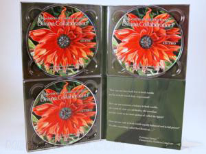 multidisc 3 disc set cd dvd 4pp tall digipak 3 trays foam panel