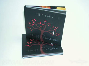 hardbound cd book red foil tray perfect bound inner pages