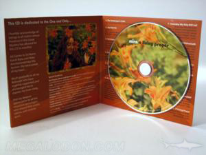 foam hub cd jacket packaging full color 4C/4C