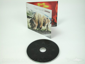 cd LP jacket custom packaging