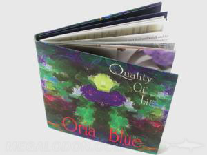 custom cd jacket packaging soft cover book swinging sleeve